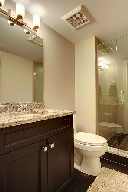 305-Neva-Glenview - Basement-Bathroom - Globex Developments Custom Homes
